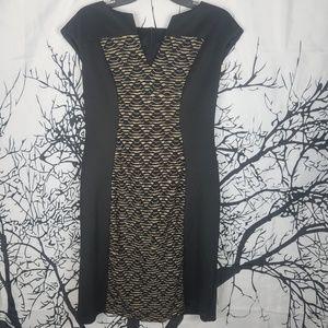 Connected | Black & Brown Cap Sleeve Dress 10